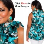Cheap plus size clothing, Ashley Stewart