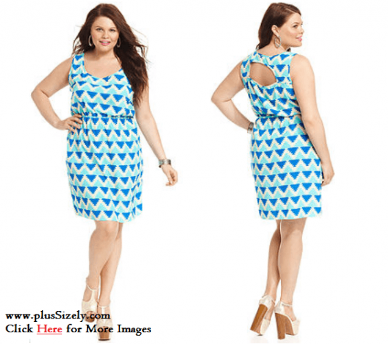 Junior Plus Size Clubwear Dresses Image