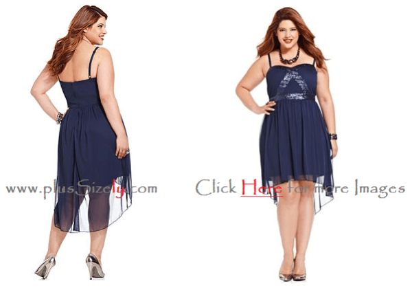 Fashion Trend Plus Size Dresses For Junior 2014 IMages