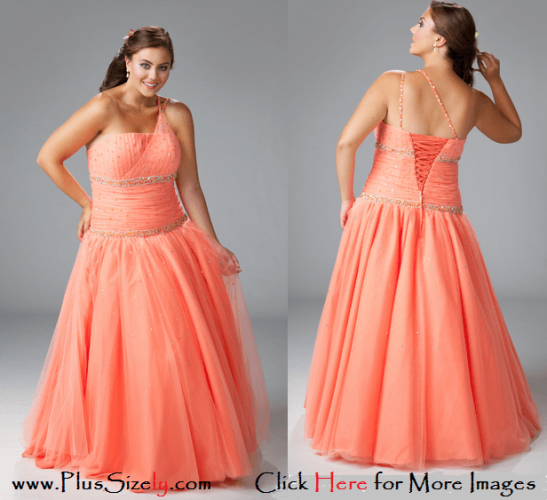 Soft Color 2014 Plus Size Fashion Images